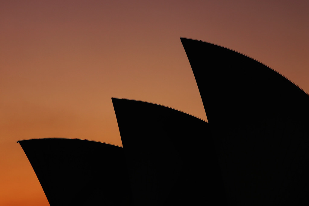 Shark Fins - click or tap to view on Flickr