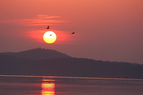 sun lake mountains chattanooga birds sunrise tn tennessee tennesseeriver chickamaugalake