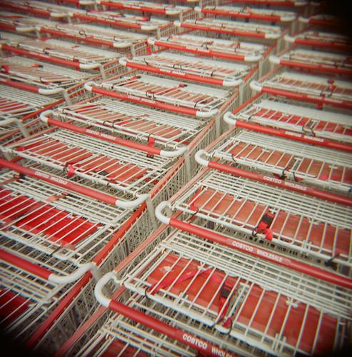 holga toycamera costco shoppingcarts yearinplastic