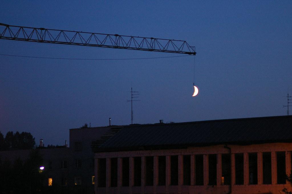 Wieczorny połów / Evening catch
