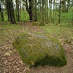 Vosvu-Dievukalna-akm5-2mai08