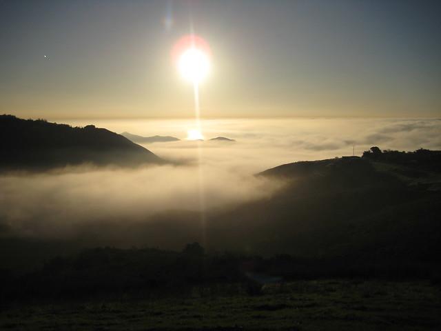 sun on fog