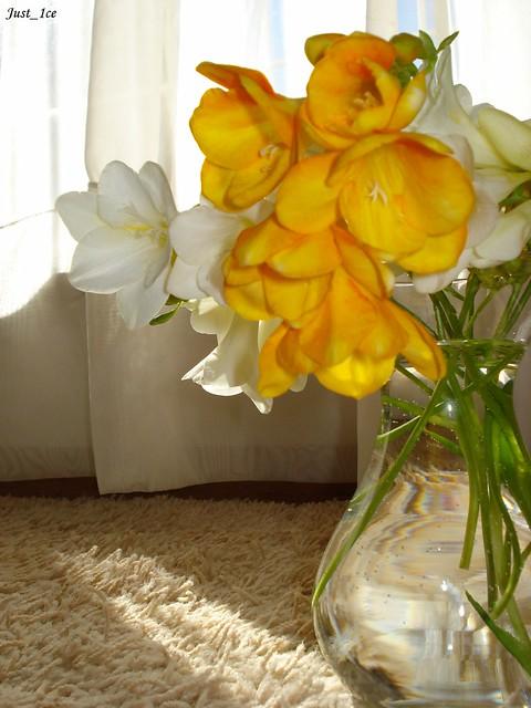 Flowers on the lounge floor