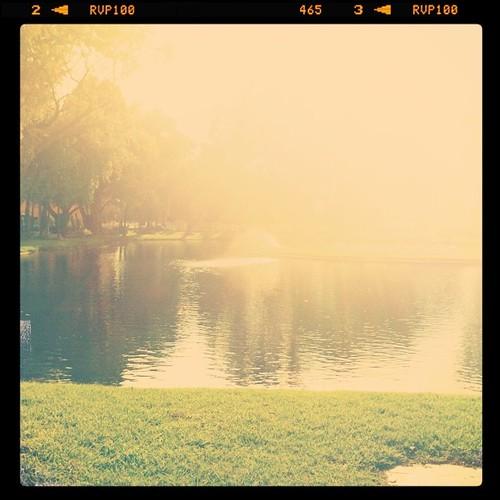 Lago UDLAP