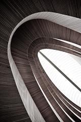 wooden curves no.6