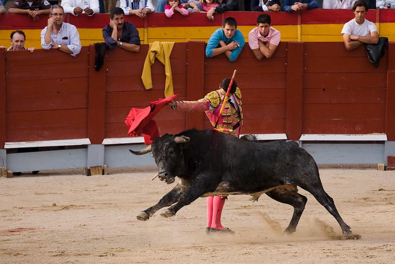 Corridas de toros - Chinchón 2009-6