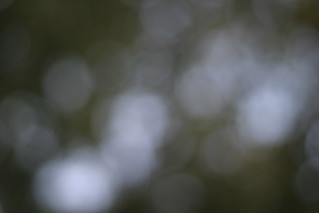 bokeh_12 | by jaybich
