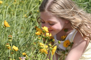 H smelling the daisies | by Amy the Nurse