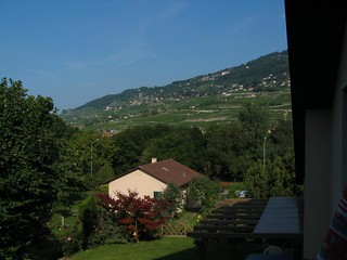 Vevey  view from our room 2-l.jpg