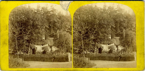 c.1865 Bournemouth | Ivy Cottage | by Bournemouth Virtual Museum