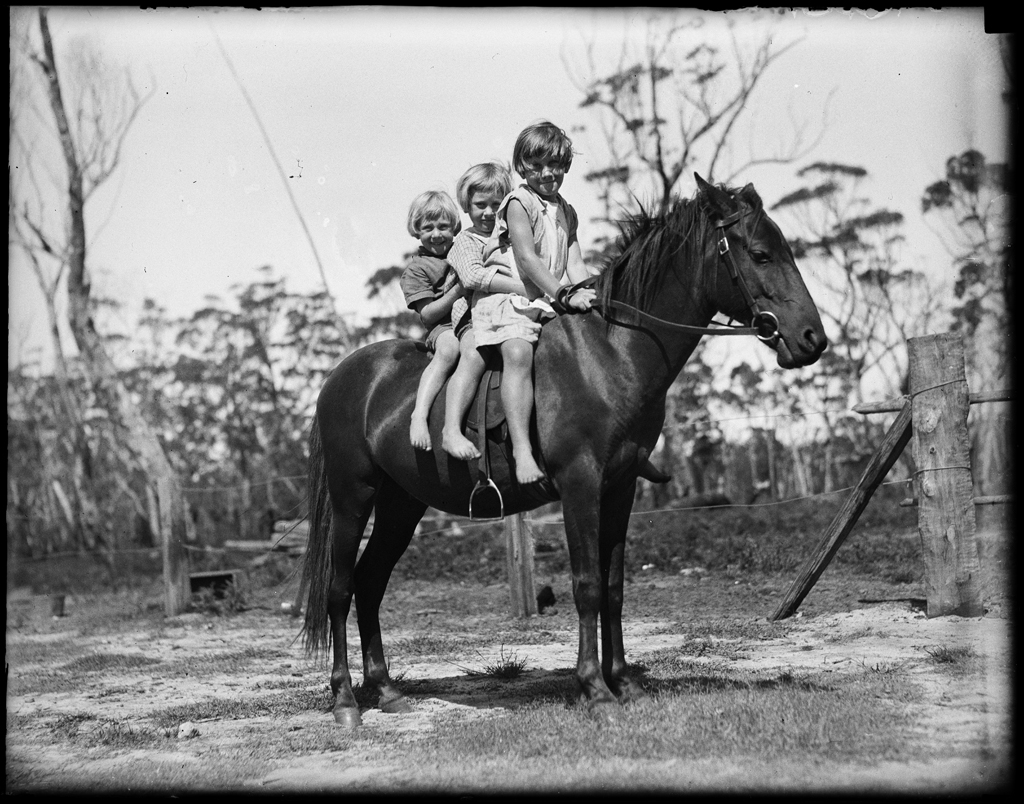 Three children on a horse at Lake Conjola