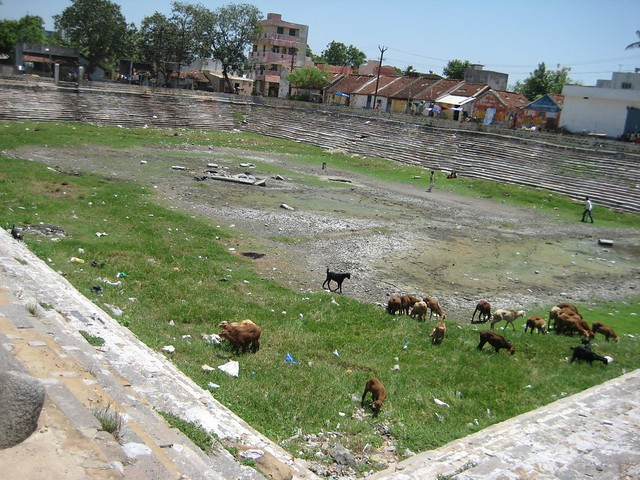 Poigai Tank where Poigai Azhwar took birth on a lotus