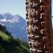 Austria: June '09