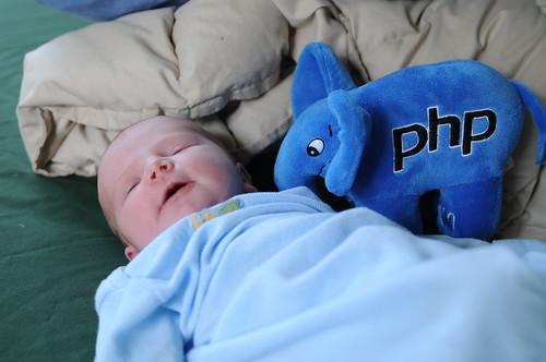 Jolene's First Toy: The ElePHPant