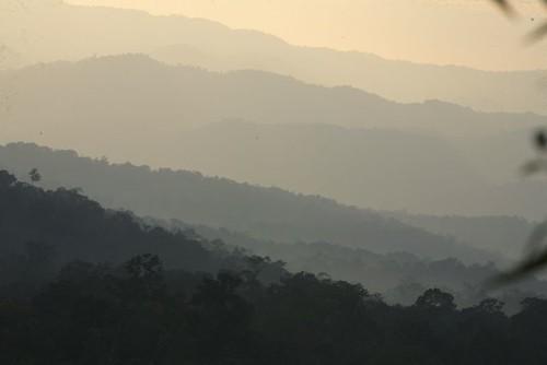 Sat, 11/24/2007 - 08:04 - Huai Kha Khaeng landscape. Credit: Christian Ziegler