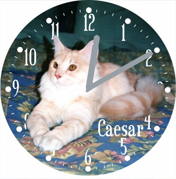 Caesar Pet Cat Clock | by customclockface