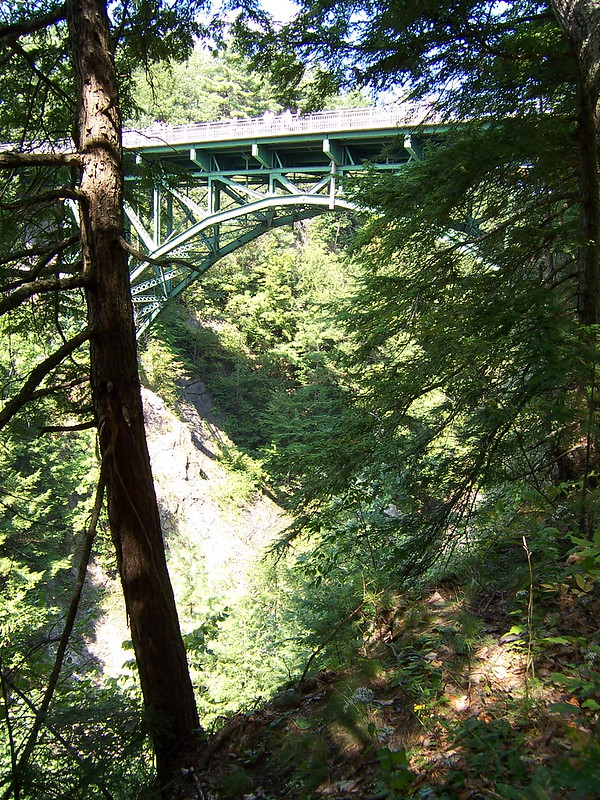 The Quechee Gorge Bridge from the natre trail.