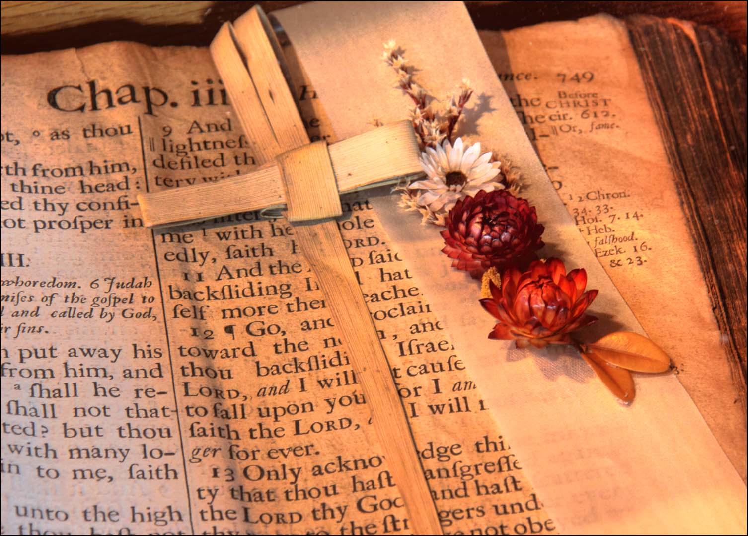 old,church,bible,lent,cross,palm,sunday,open,Middlewich,St,saint,michaels,cheshire,UK,365days,book,books,scripture,text,stillife,stilllife,still,life,stuff,hotpix!