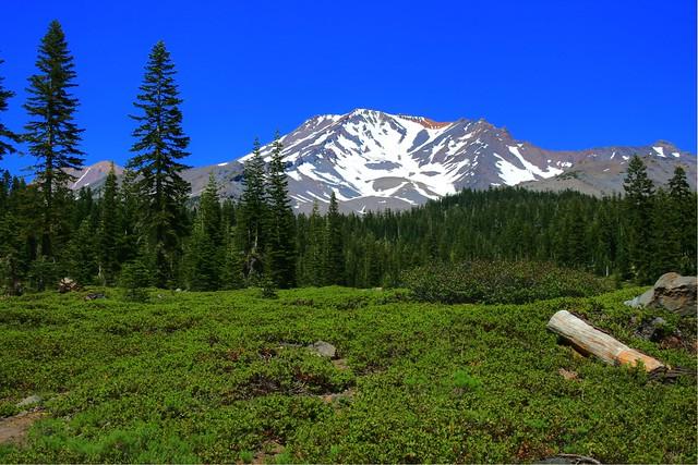Mt. Shasta in July