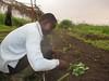 Congo sicurezza alimentare