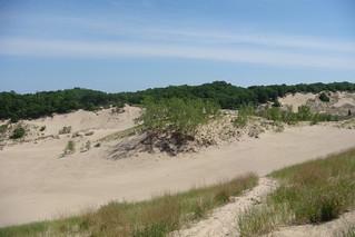 Indiana Sand Dunes | by Philip Larson