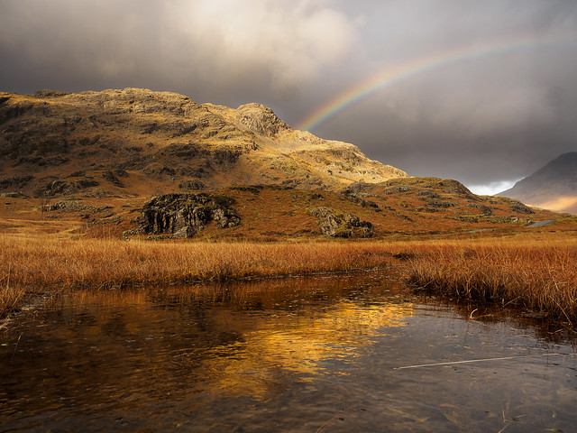 Middle fell reflection