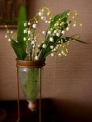 Liljekonvalj ~ Lily of the Valley | by Per Ola Wiberg ~ Powi