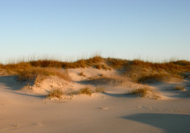 waves onland