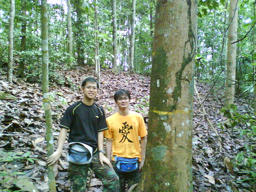 Tue, 12/16/2008 - 10:21 - Fairoz and Thomas in secondary forest in Bukit Timah. Credit: Kang Min
