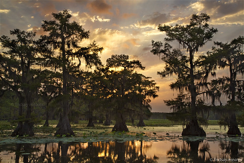statepark sun lake clouds sunrise ray texas tx swamp uncertain sunray caddolake