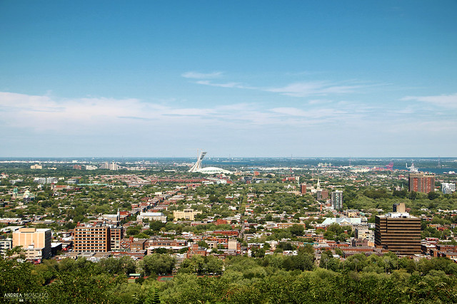 Olympic Stadium View - Montréal  (Québec, Canada)