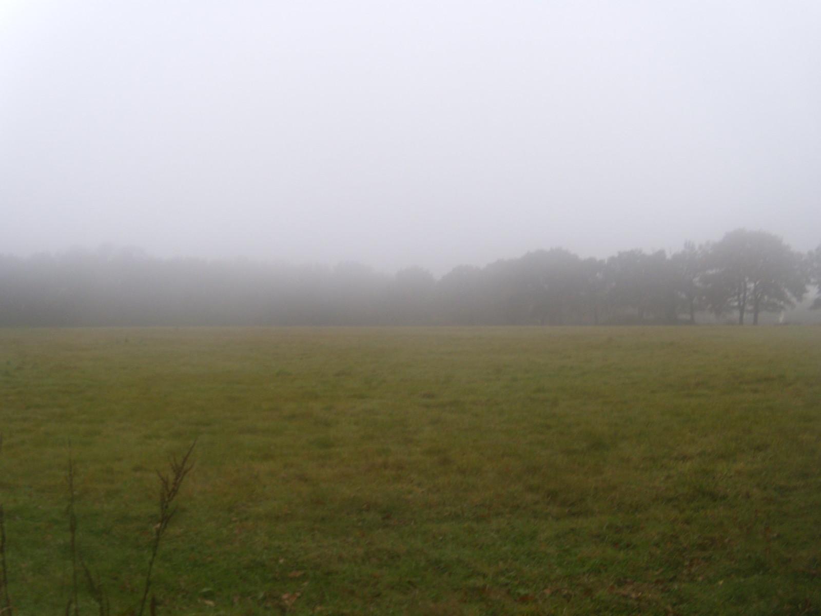Mist Otford Round Walk