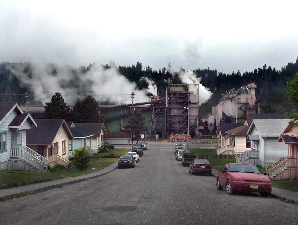 Scotia, California | Pacific Lumber Company (PALCO) redwood