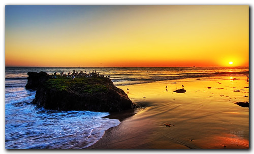 Campus Point (UCSB) | by dhilung