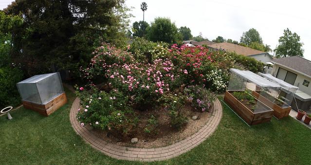 K5068326_46 110505 garden rose circle east vege bed crop ICE rm stitch99 PScs4 fix compr10