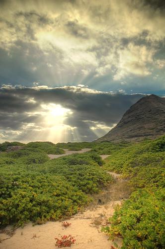 mountain west beach sunrise point hawaii coast oahu kaena waianae naupaka mokuleia