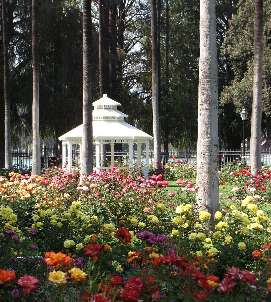 Fairmount Park Riverside California Map.A Garden Of Color Rose Garden At Fairmount Park Riverside Kay