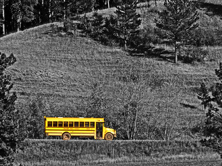 Country school bus route | by photogramma1