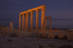 Palmyra at dawn | by b5foan