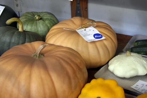 Long Island Cheese pumpkins at the Fair | by carleton500gardener