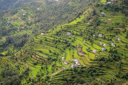 champs montagnes nechabatase nepal préci solukhumbu terrasseterrasses village