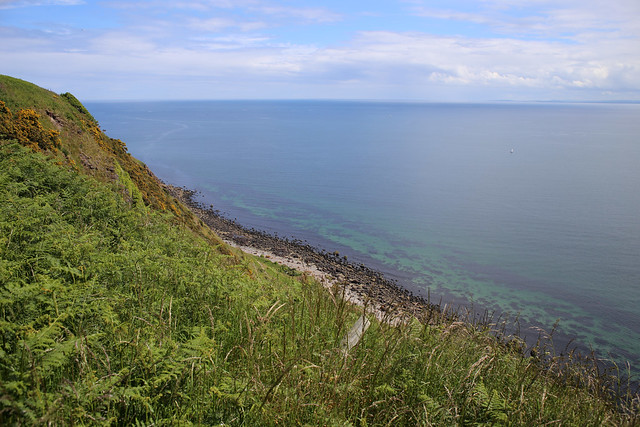 The coast north of Nigg