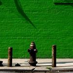 Lime in Brooklyn