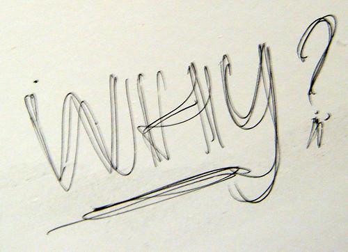 WHY? | by quinn.anya