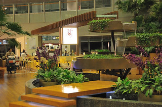 Singapore Changi International Airport | by hsuanwei