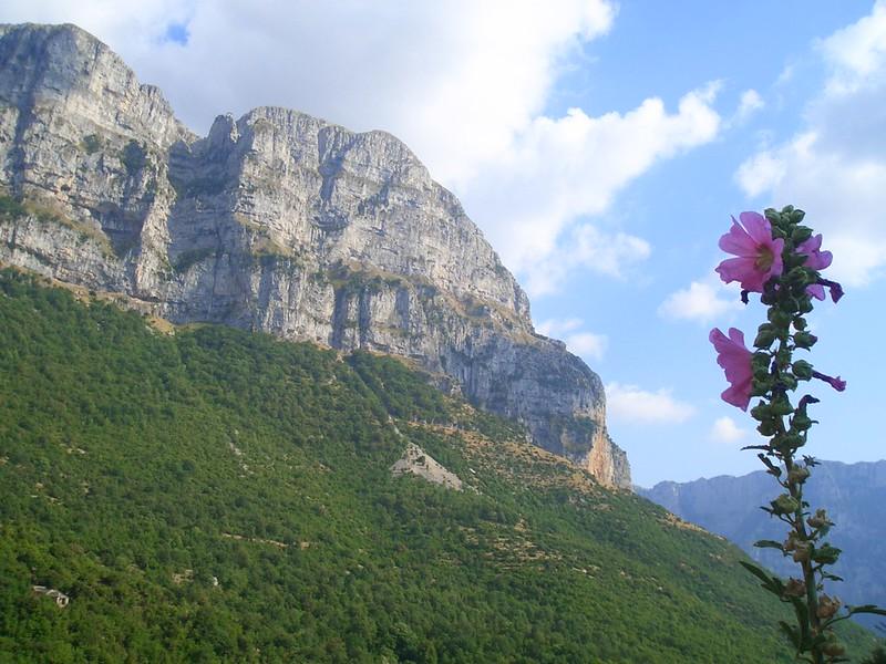 Pind Mountain - Zagoria