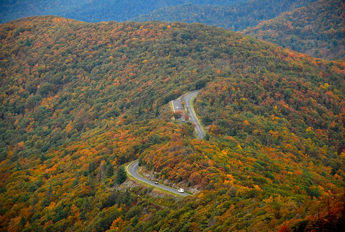 autumn favorite fall virginia hike foliage trail dcist shenandoah stonyman skylinedrive shenandoahnationalpark