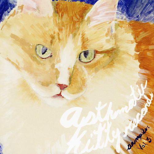 Asthmatic Kitty Sampler - Volume 3 (Cover art)