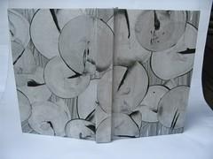 Case bound book   by emmajanehw