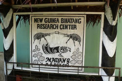 Sun, 08/17/2008 - 05:01 - Binatang Research Center in Madang, PNG. Credit: CTFS